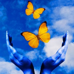 Etheric Cord Removal Freedom Butterflies