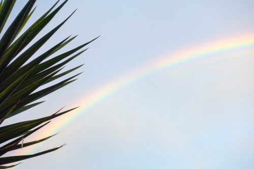 Law of Attraction Rainbow