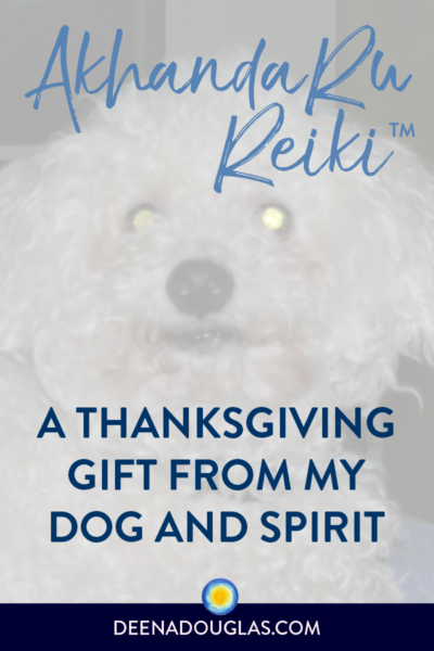 Akhanda Ru Reiki™: A Thanksgiving Gift from My Dog and Spirit